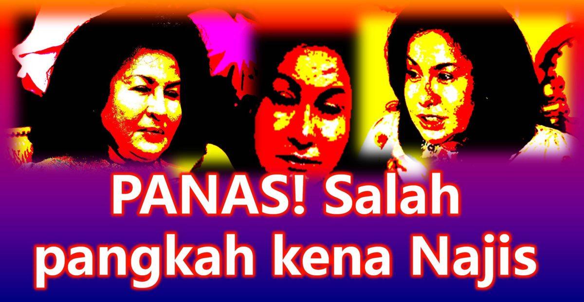 PANAS! Salah pangkah kena Najis, hanya Pakatan HARAPAN pilihan muktamad kita semua! Sebarkan!