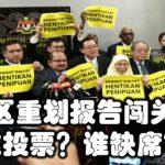 选区重划报告闯关:谁投票?谁缺席?