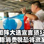 落实国阵大选宣言须3千亿,倪可敏指消费税恐将涨至10%。