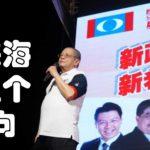 林吉祥:马来海啸五个面向