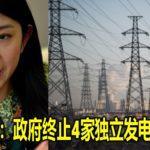 杨美盈:政府终止4家独立发电厂合约