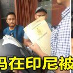 嘉玛在印尼被捕!