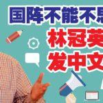 林冠英:宪法保障使用母语