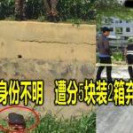遇害者身份不明 遭分5块装2箱弃尸河中
