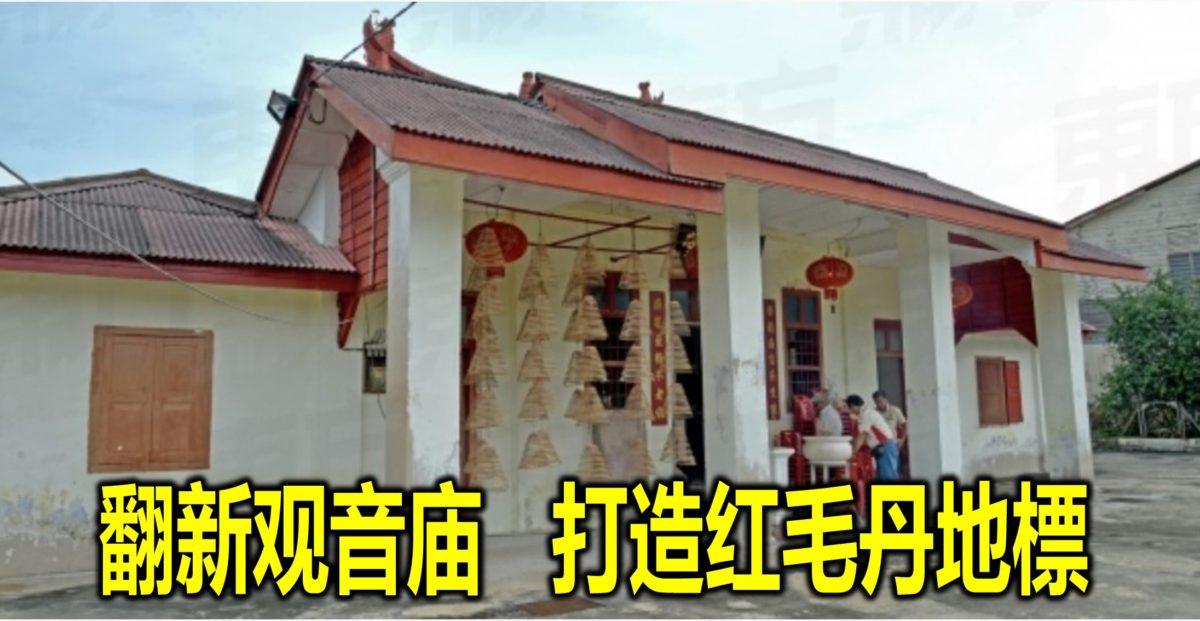 翻新观音庙 打造红毛丹地標