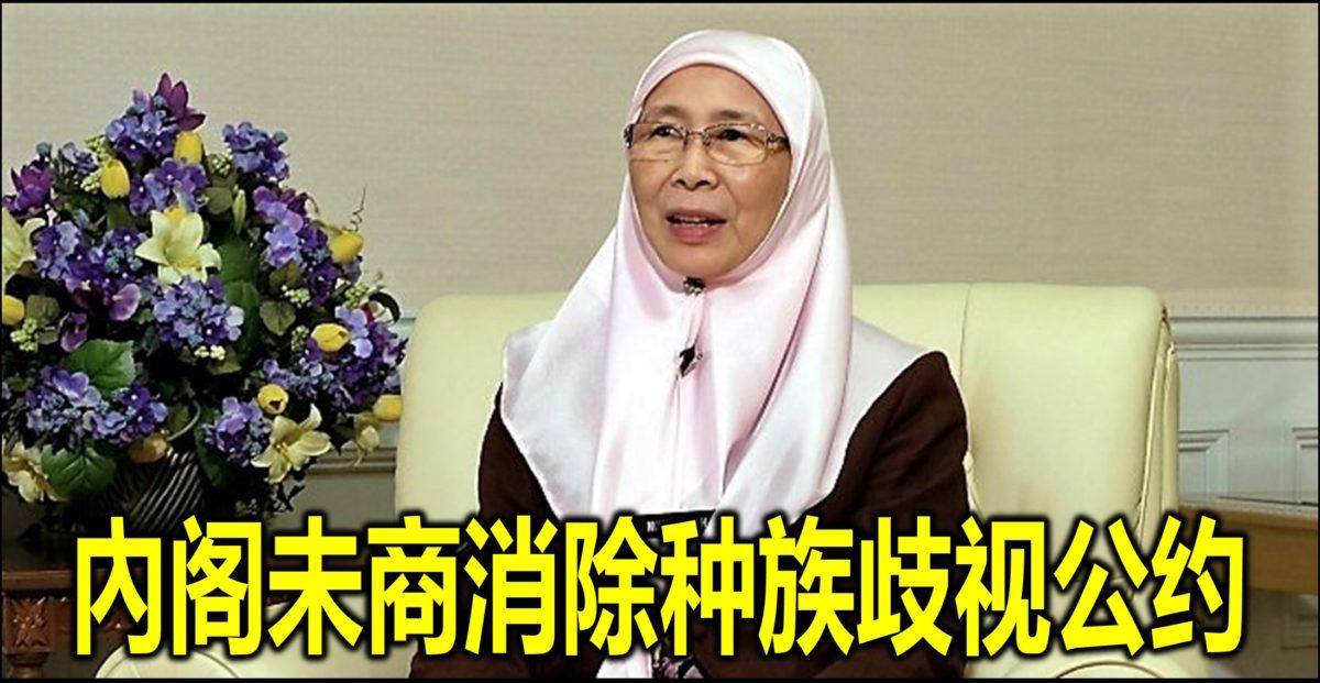 內阁未商消除种族歧视公约
