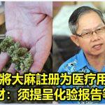 若將大麻註册为医疗用途 李文材:须提呈化验报告等文件