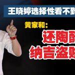 王晓婷选择性看不到希盟表现 黄家和:还陶醉在纳吉盗贼领导