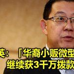 林冠英:「华裔小贩微型贷款」继续获3千万拨款