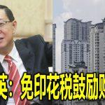 林冠英:免印花税鼓励购首屋