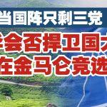 当国阵只剩下三党 马华会否捍卫国大党在金马仑竞选?