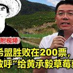 """希盟胜败在200票,倪可敏呼""""给黄承毅草莓就好""""(內附视频)"""
