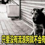 李文材:只要没有流浪狗就不会有狂犬症