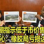 揭前朝指示低于市价售土地 郭素沁:橡胶局亏损达8亿