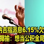 纳吉指派息6.15%欠妥 林冠英揶揄:想当公积金局CEO?