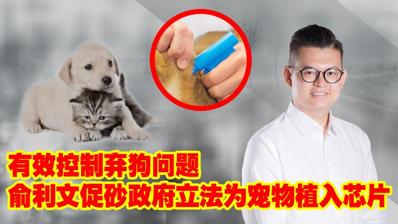 有效控制弃狗问题 俞利文促砂政府立法为宠物植入芯片