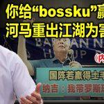 """你给 """"bossku""""赢?河马重出江湖为害人间!(內附视频)"""