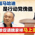 洛曼指马哈迪是行动党傀儡,张哲敏促请魏家祥马上表态!