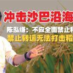 陈泓缣:不应全面禁止稻米转运