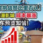 张哲敏挑战赞比里否认!对于动漫影城成本暴涨和股东预支知情!