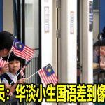 巫统议员:华淡小生国语差到像外来者