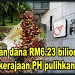 Suntikan dana RM6.23 bilion: Bukti tekad kerajaan PH pulihkan FELDA