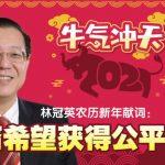 林冠英农历新年献词: 华裔希望获得公平对待