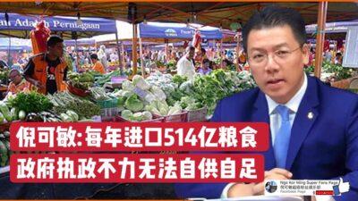 倪可敏:每年进口514亿粮食 政府执政不力无法自供自足