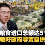 国家粮食进口总额达514亿 倪可敏吁政府寻策自供自足